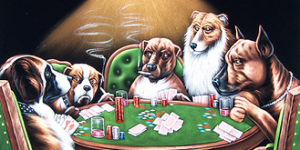 Making sense of poker